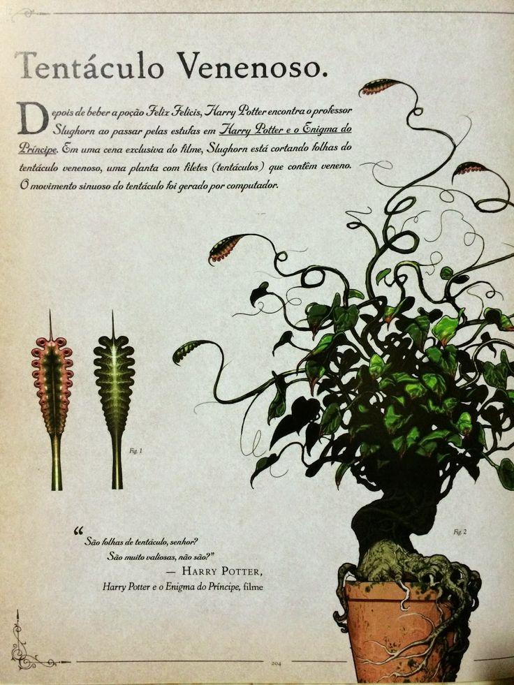 Biomas para RPG: Florestas temperadas parte 2. Quem nunca se deparou com uma planta assassina maluca, uma erva milagrosa ou uma criatura folha...