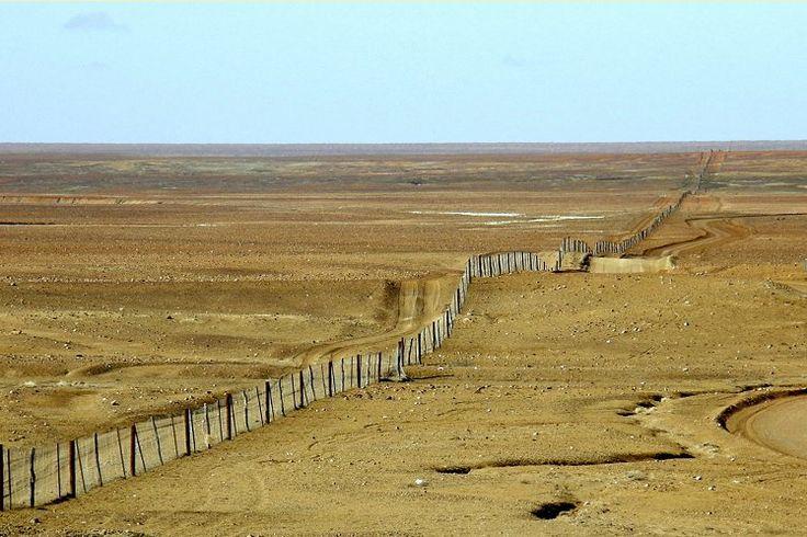 Dingo Fence crossing the barren Moon Plain near Coober Pedy