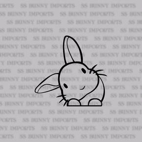 Dieses niedliche kleine Kaninchen wird jeder über ihre Beine wachen! Es ist mit nach