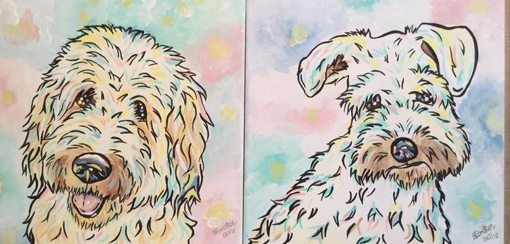 Cute labradoodle and terrier portrait set!