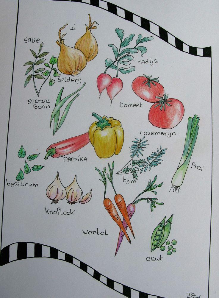 Food illustratie kleurpotlood gemaakt door Tonny Cooyman