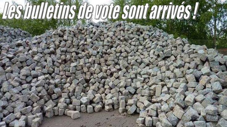 Photos Humour : Allez voter !