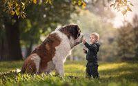 Kozani on Line  : Τα μυστικά της συνύπαρξης για παιδιά και κατοικίδι...