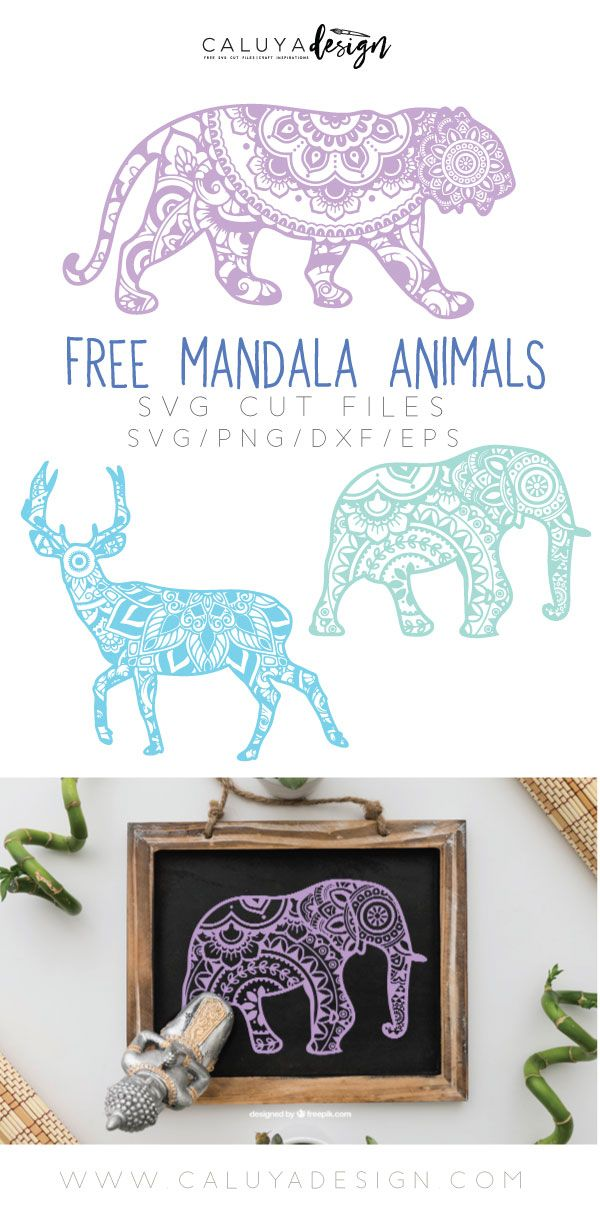 Free Mandala Animal SVG cut file, compatible with Cameo Silhouette, Cricut and other major cutting machines. Zentangle SVG cut file, elephant cut file, tiger cut file, deer cut file, Mandala SVG cut file, free SVG cut file, Yoga SVG cut file. Perfect for DIY craft Projects with your Cricut Explore and Cameo Silhouette with Heat Transfer Vinyl, Vinyl Stickers, Fabric and many more!