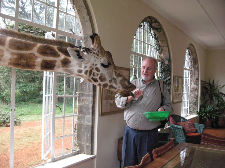 Kensington's Allen Thompson shares some food with a friendly giant at Giraffe Manor!