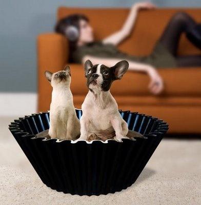 Hondenmand - of kattenmand natuurlijk