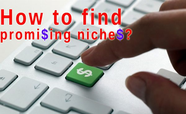 Finding Your Next Online Venture: Tools for Discovering Promising and Lucrative Niche