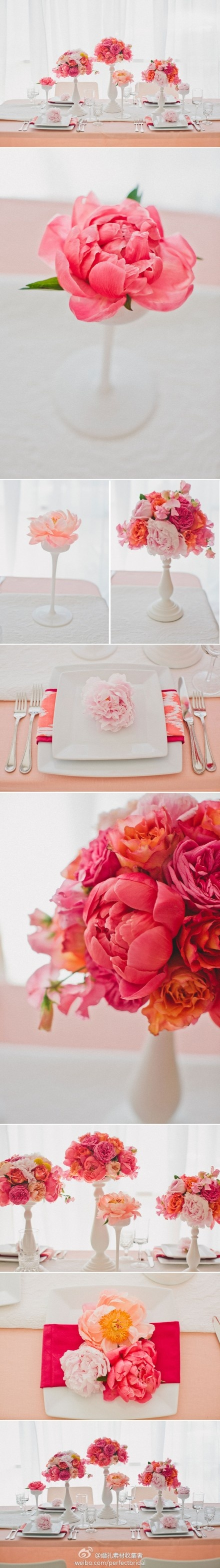 white vases and peonies