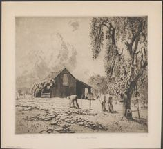 The pumpkin patch, Windsor, New South Wales, 1921, etching by Sir Lionel Lindsay (1874-1961). Image no nla.pic-an10691715, part of A collection of prints and woodcuts by Lionel Lindsay, 1890-1939, courtesy National Library of Australia.