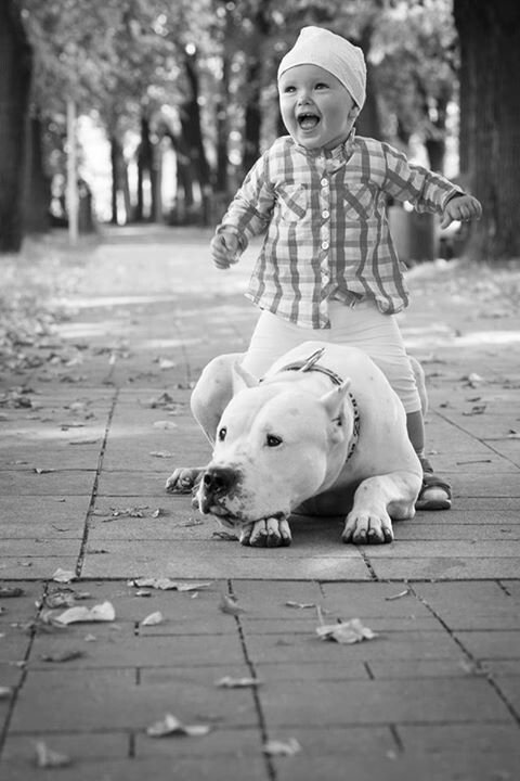 #Dogo #Argentino and the baby)