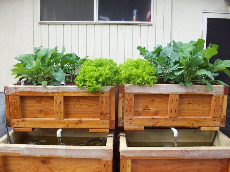 another nice aquaponic design