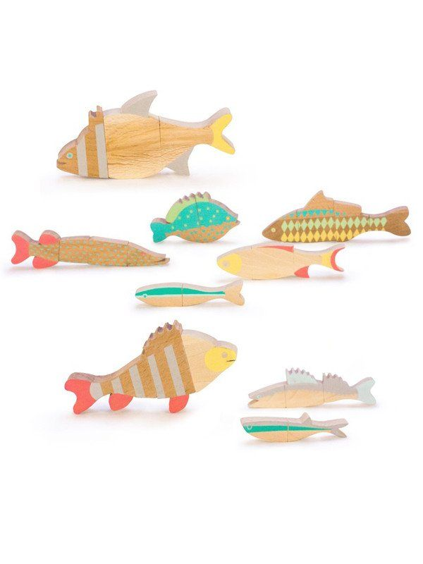 The Fishes of Balaton | The Gathered Store