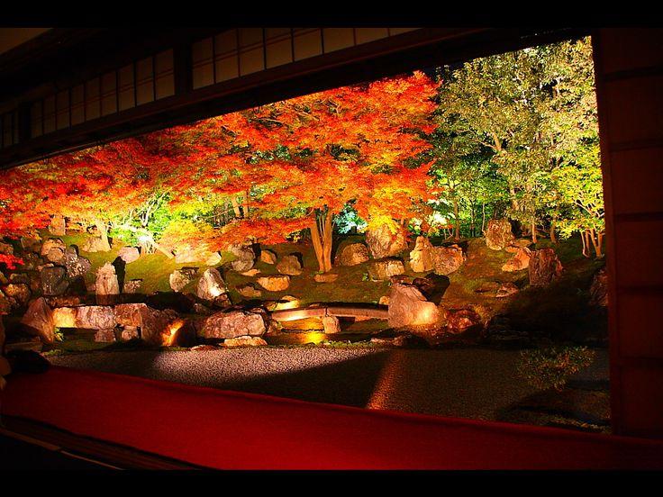 Beautiful Autumn Scenery in