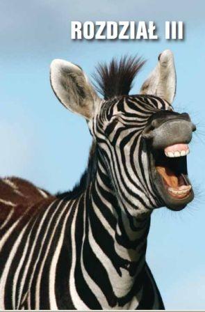 W świecie zwierząt, żeby właściwie zrozumieć sygnały przekazywane przez inne osobniki, należy interpretować je w określonym kontekście. Ten sam grymas na twarzy zebry może oznaczać gotowość do ataku i zaproszenie samca do działań prokreacyjnych.