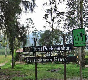 Asyiknya Wisata Di Bumi Perkemahan Ranca Upas Bandung - Bumi Perkemahan Ranca Upas adalah salah satu tempat berkemah di Bandu