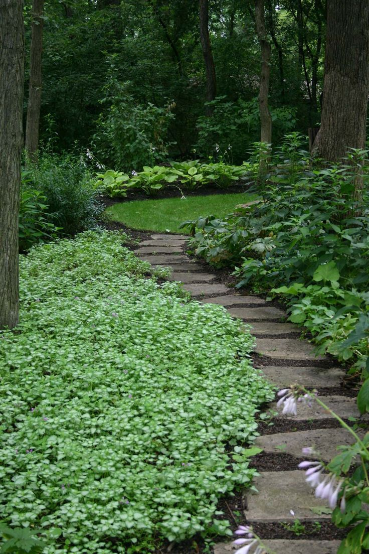 Backyard, Amazing Backyard Landscapes for Small and Large Yards: Green Backyard Landscapes