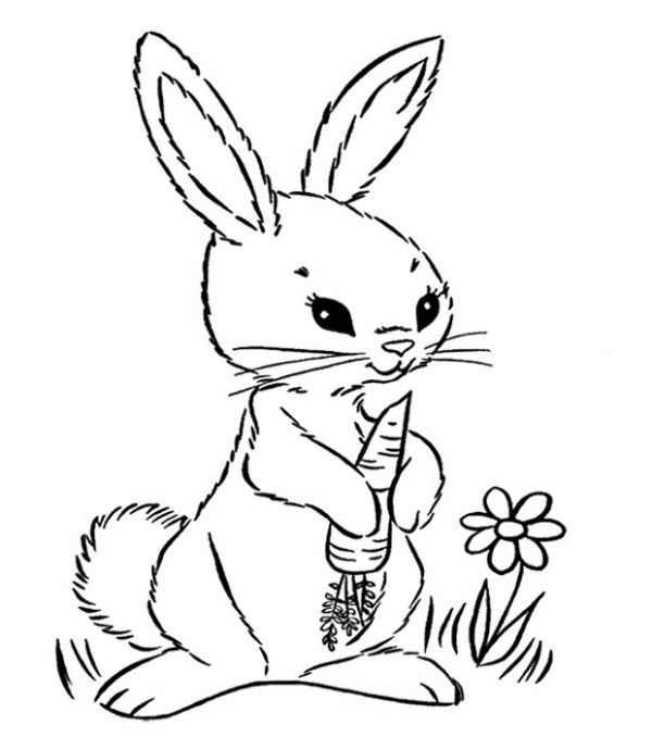 Printable Carrot Coloring Pages Free
