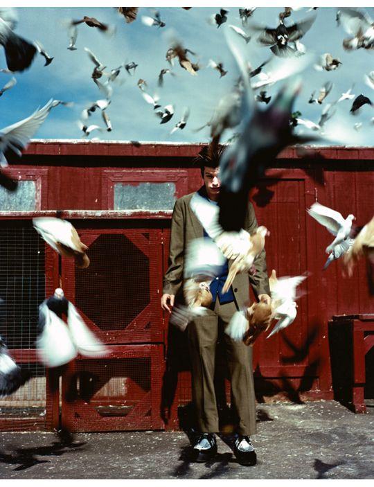 Pigeon coop, Brooklyn, New York, 1997