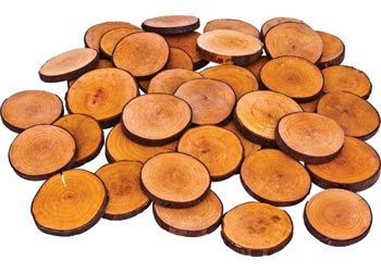 Tree Blocks Wooden Discs. These discs are excellent for open ended play and construction. Made from beech and alder.