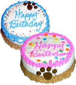 Granola Dog Birthday Cake
