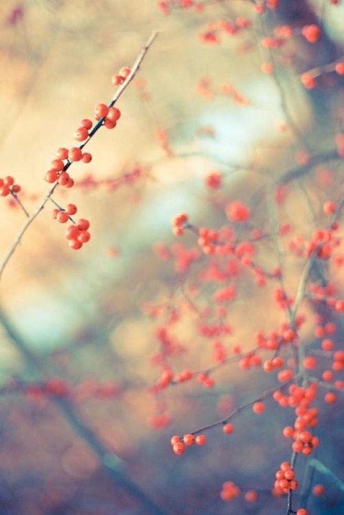 .#Fall