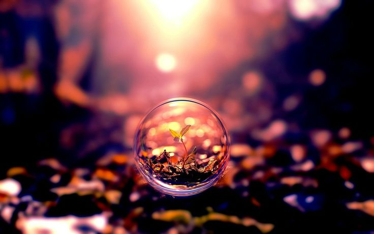 Creative Bubbles... by Partha Ghosh on 500px