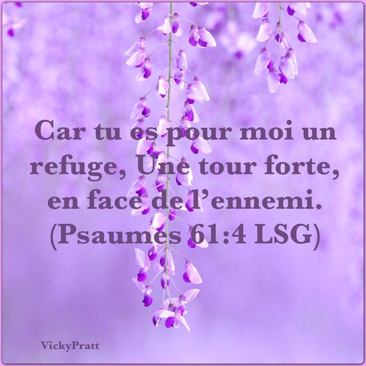 Psaumes 61:4