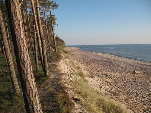 the Baltic coast. Lithuania