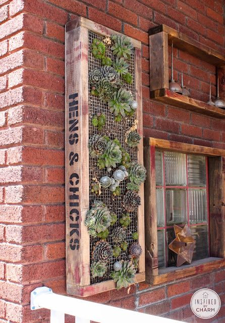 Hens and chicks on the wall.  Like.  Via She Survived: A Wall Planter Story | Inspired by Charm