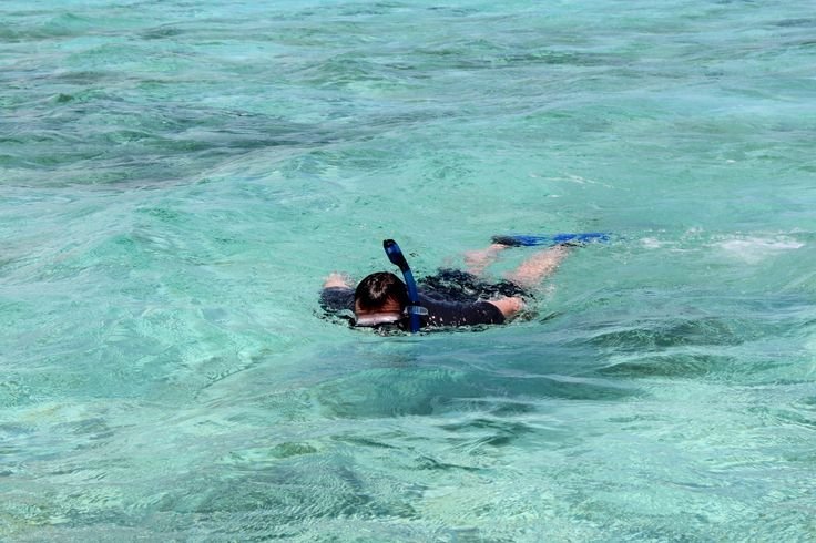 Snorkeling at Turneffe Atoll in Belize. #belize #snorkeling #centralamerica #divebelize #turneffeatoll #vacationinbelize #chabilmar #placencia #vacationinbelize #resortsinbelize
