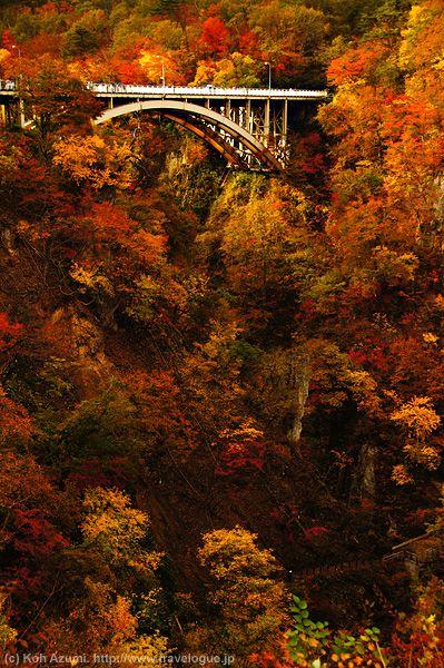 Miyagi,Japan #AutumnLeaves #紅葉