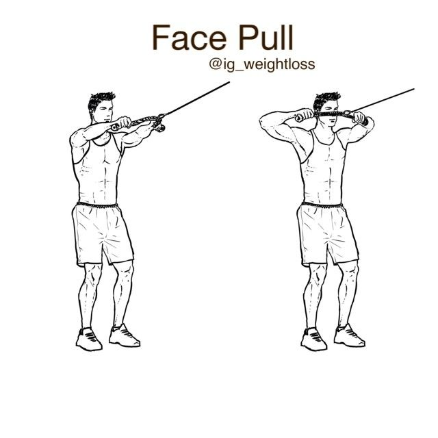 17 best images about arm exercises on pinterest