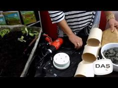 COMO FAZER HORTA EM CANO PVC 2 (ANTES DEPOIS) - YouTube