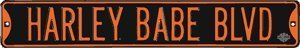 Harley Davidson Babe Blvd Embossed Steel Street Sign by Ande Rooney, Inc.. $27.95. Pre-drilled holes. High quality steel with powder coat enamel. Suitable for indoor and outdoor use. Embossed enamel lettering. A novelty street sign with an authentic look, this high quality steel sign would be a cool way to show off your love of Harley-Davidson® motorcycles.
