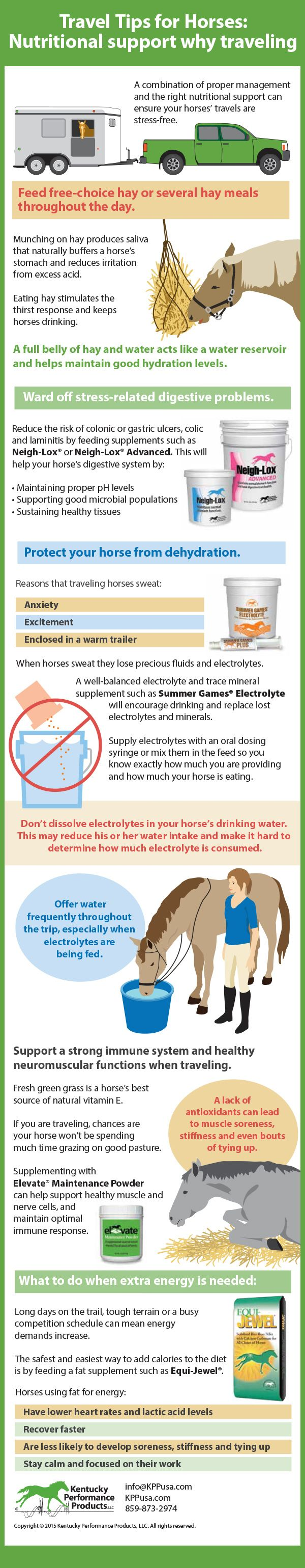 Travel Tips for Horses: Nutritional Support