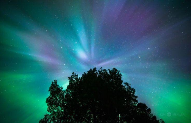 aurores-boreales-de-Finlande-par-Joni-Niemela-10 aurores boréales de Finlande par Joni Niemelä