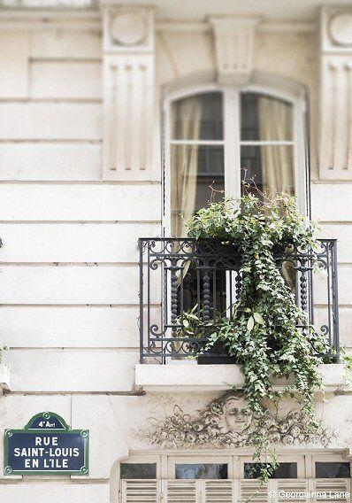 La rue Saint-Louis-en-l'Ile  (Paris 4ème).
