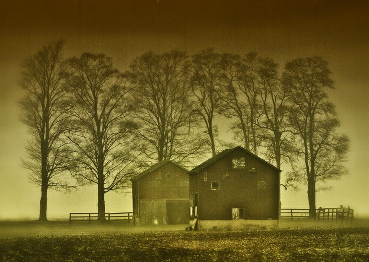 Tobacco drying barns, Clarington, Ontario, Canada