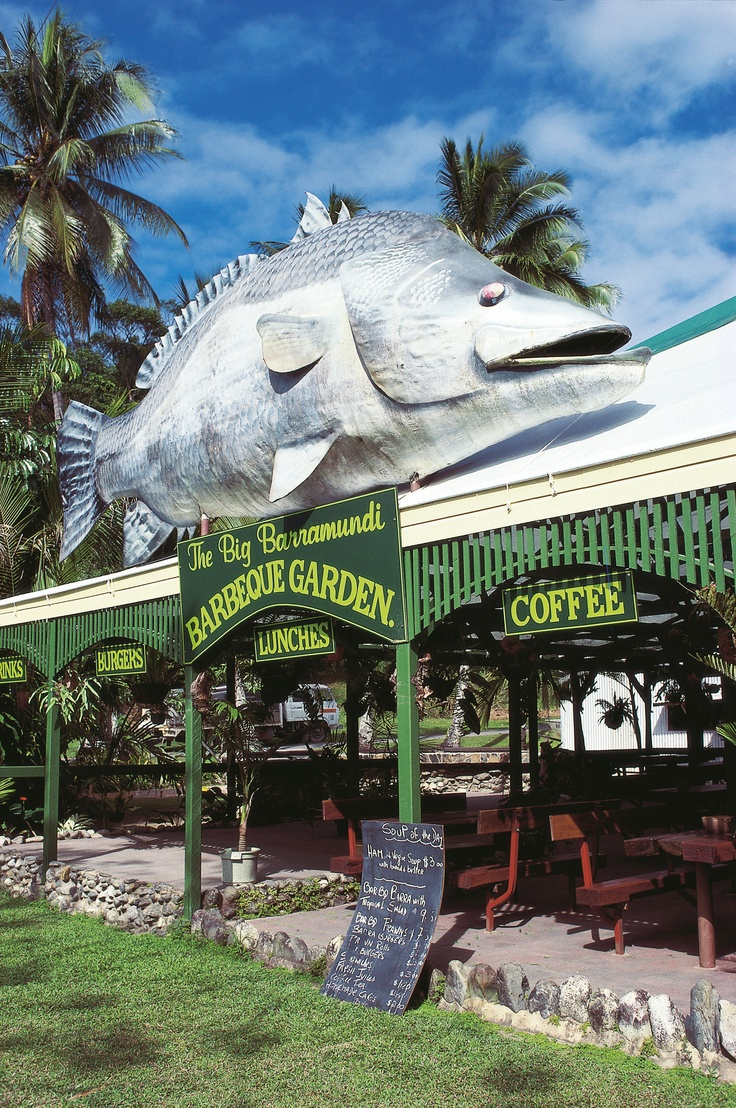 The Big Barramundi, Daintree, Queensland. In Australia, barramundi is an iconic table fish revered as a quintessential Australian brand. Its name is, after all, derived from an Australian Aboriginal name.