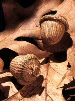 Miniature Acorn Basket  Stephen Zeh