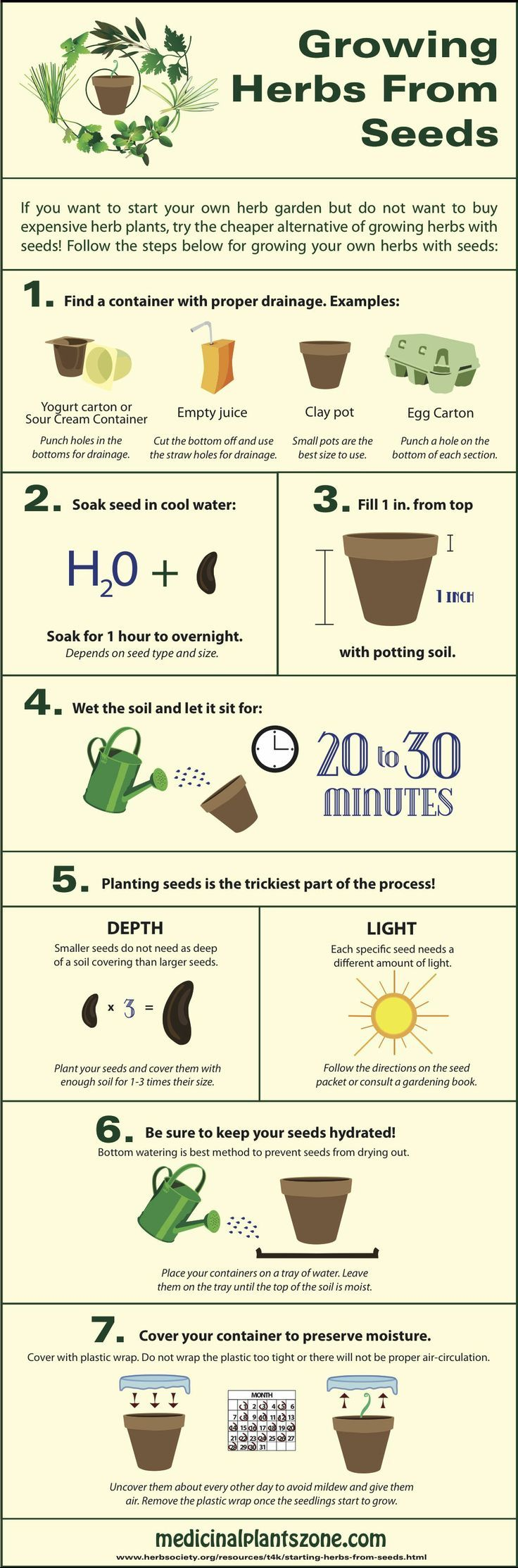 7 Steps to Growing Herbs from Seeds: http://homeandgardenamerica.com/how-to-grow-herbs-from-seeds