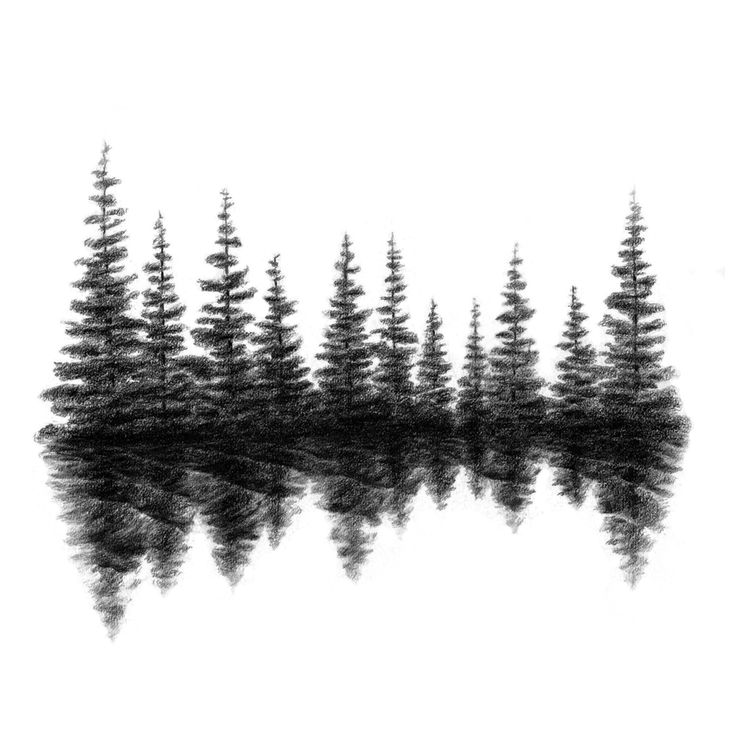 Black and white pine tree silhouette
