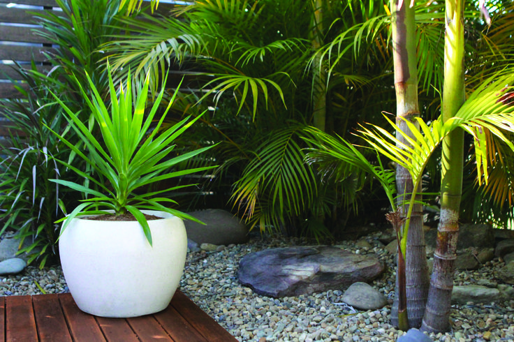 Northcote Pottery 42 x 38cm White Precinct Lite Terrazzo Moon Pot #courtyardplant #outdoorpot