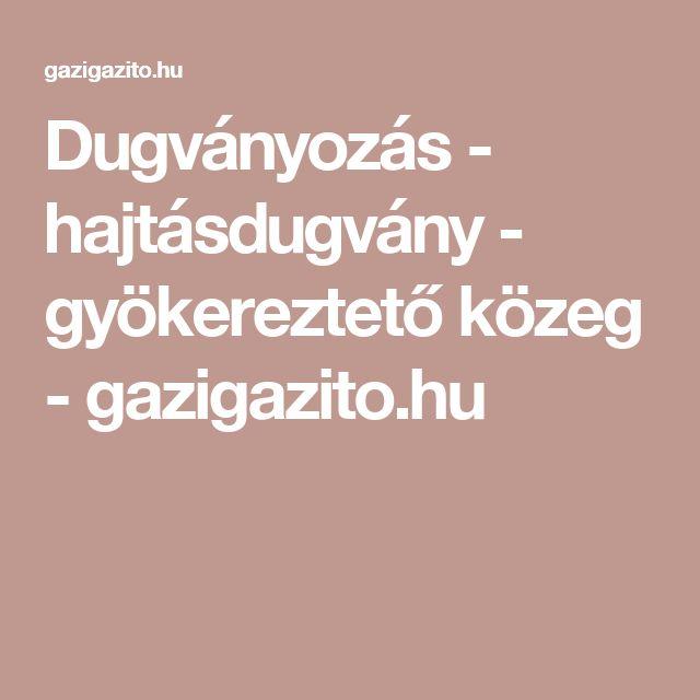 Dugványozás - hajtásdugvány - gyökereztető közeg - gazigazito.hu