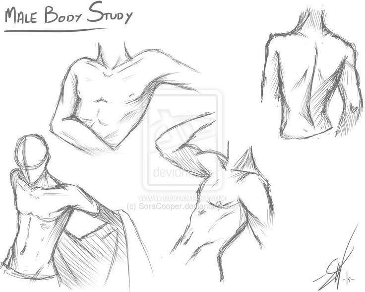 Male body study by SoraCooper on deviantART