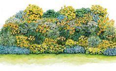Sonnengelbes Beet zum Nachpflanzen -   Gerade im Frühling und Frühsommer sind gelb blühende Pflanzen im Beet willkommen. Besonders frisch wirken sie zusammen mit weißen Partnern.