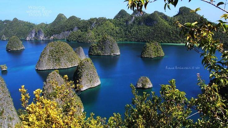 Le più belle barriere coralline del mondo, ecco i migliori posti per immersioni e snorkeling  Raja Ampat – Indonesia