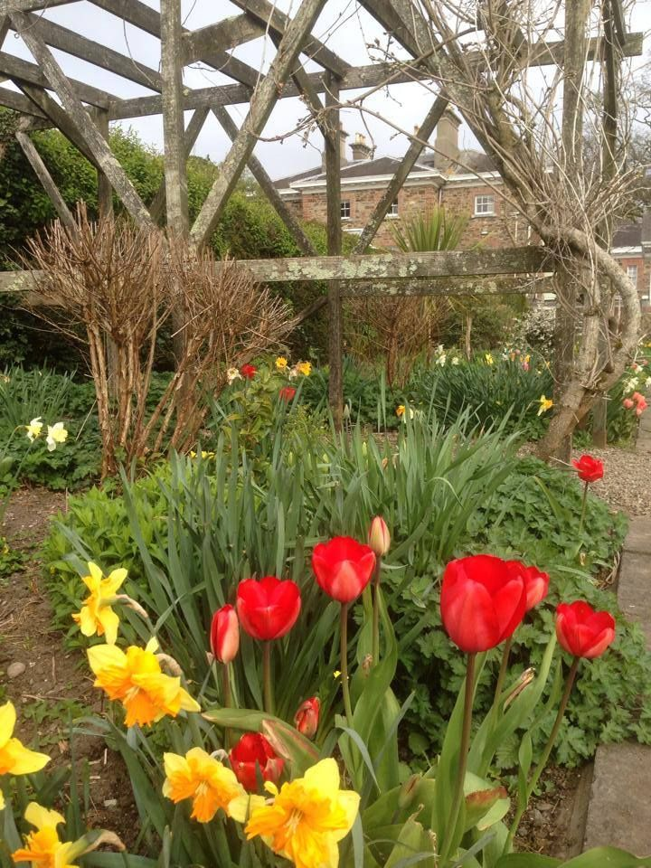 #Spring is in the air! Discover #beautiful #gardens at #MarlfieldHouse #hotel !