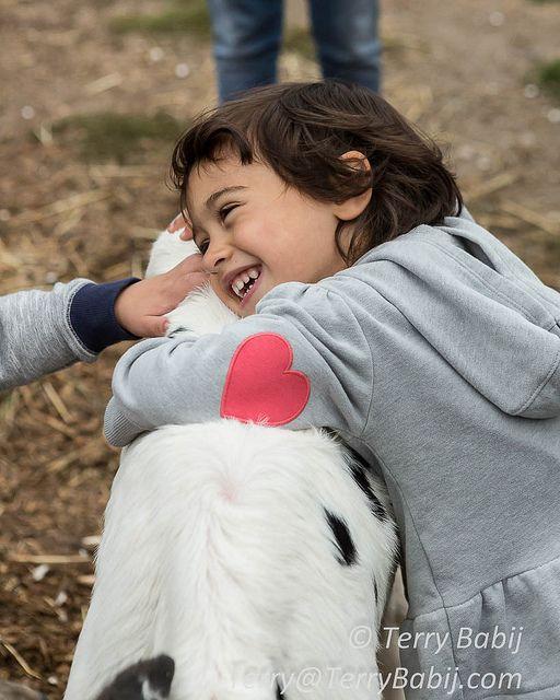 From Sukkot on the Farm Hamilton Jewish Community