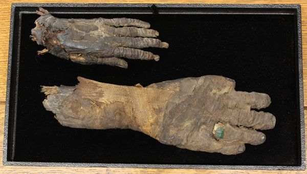 Mummified hands on auction